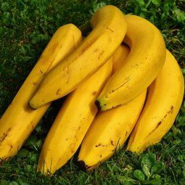 ¡¡¡ Pobre Plátano !!!